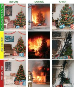 NeCTA: Tree Safety